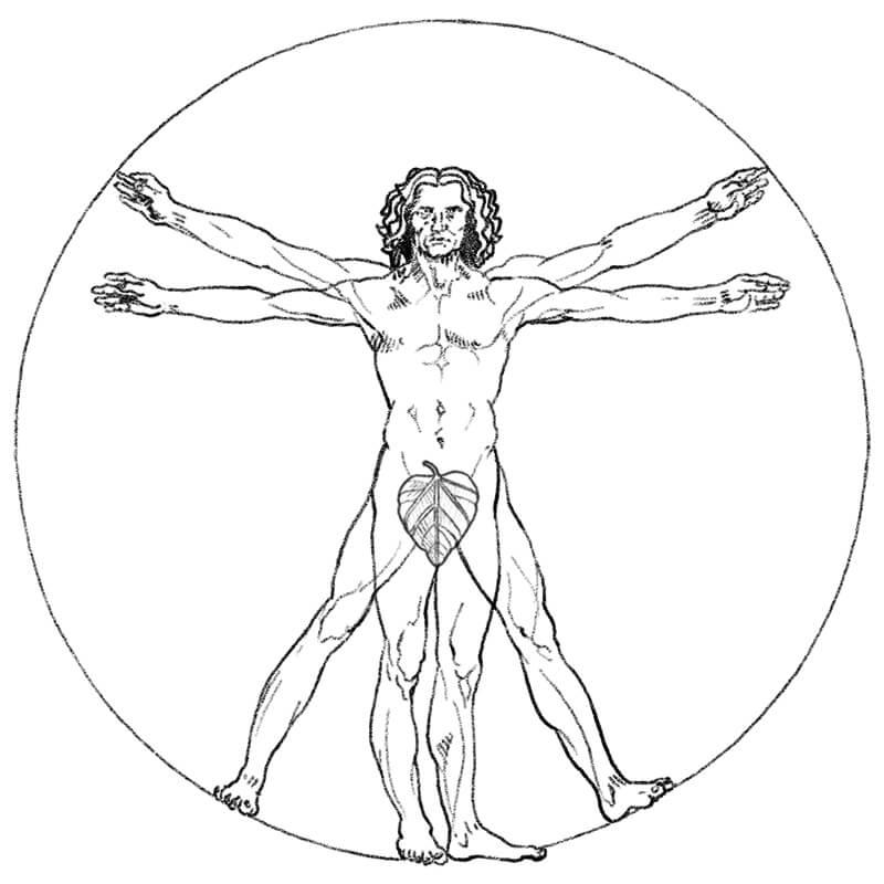 DaVinci human figure illustration